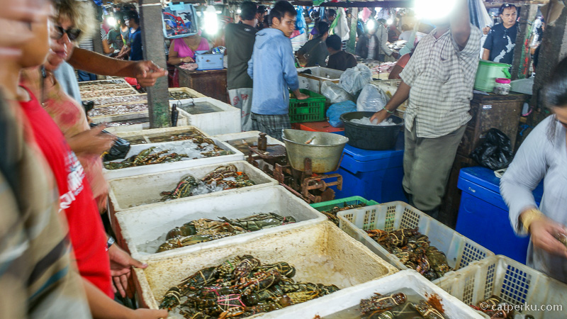 Berbagai macam kepiting juga ada loh, jangan lupa ditawar kalau mau beli