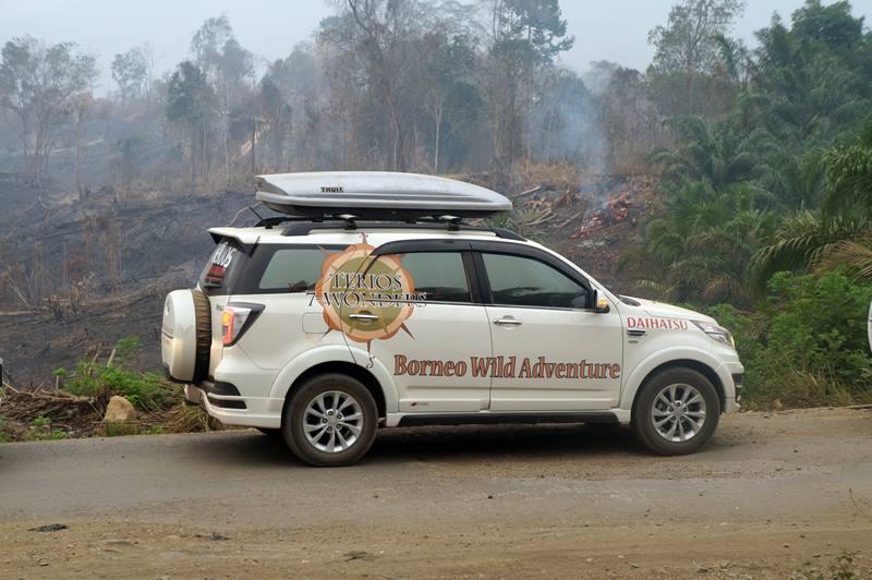 Berhenti sejenak untuk melihat kebakaran hutan