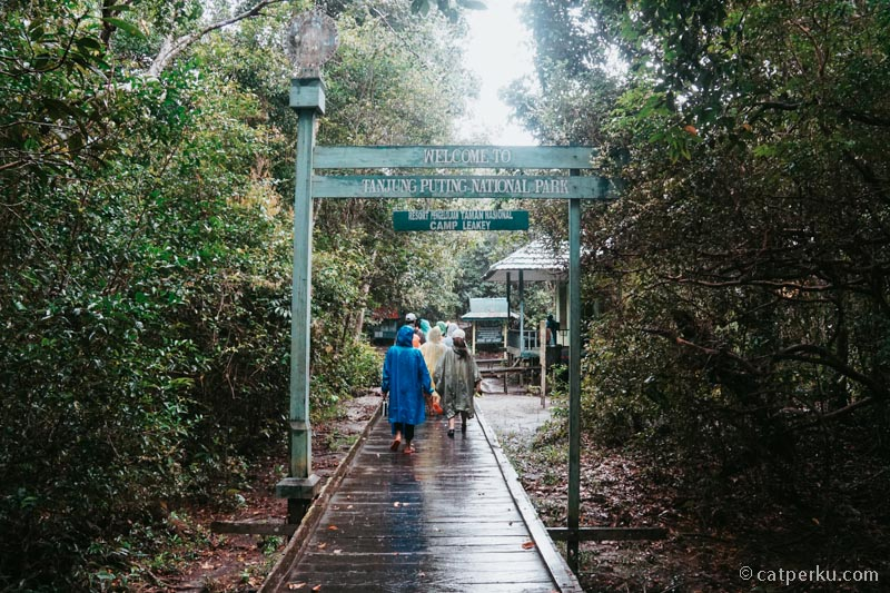 Dibalik gerbang ini, terdapat pusat konservasi Orangutan