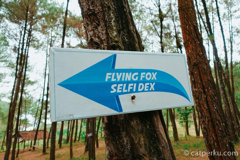 Flying fox dan selfie dek adalah salah satu daya tarik dari tempat wisata Ranu Gumbolo di Tulungagung ini.