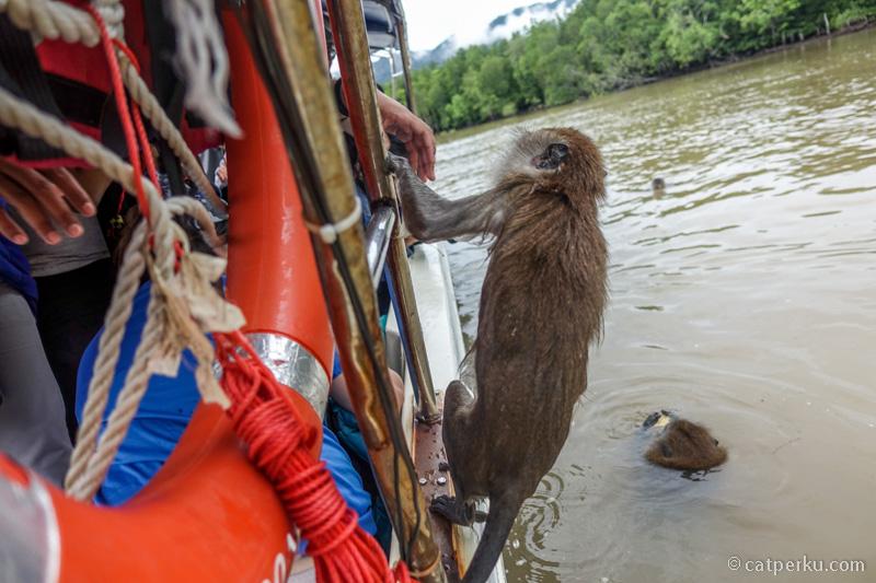 Harus hati-hati sama mereka, karena mereka juga bisa naik ke atas perahu