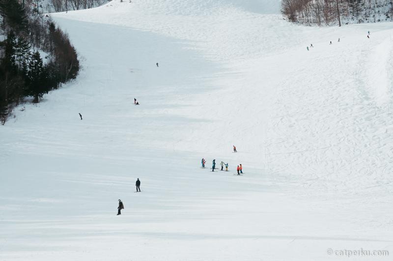 Kalau yang ini sepertinya tempat latihan ski anak-anak.