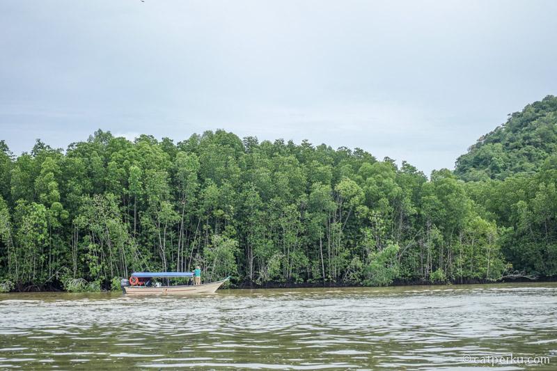 Liburan di Langkawi bakalan kurang lengkap tanpa menyusuri Kilim Geoforest Park ini