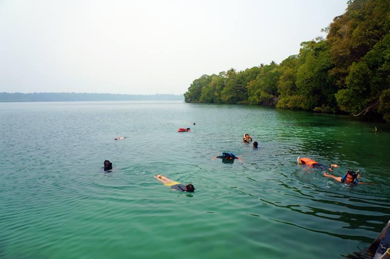 Lokasi berenang dengan Ubur-ubur ada di dekat dermaga Danau Kakaban. Namun, jangan sampai terlalu dekat ya :)