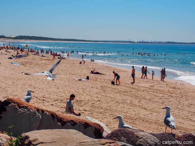 Nggak kalah ramai dari Bondi Beach kan?