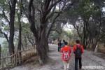 Asik juga sedikit trekking memutari kawah Gunung Tangkuban Perahu