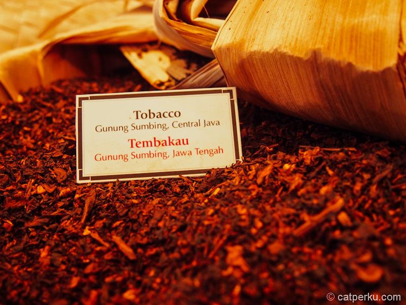Salah satu tembakau yang digunakan untuk produksi