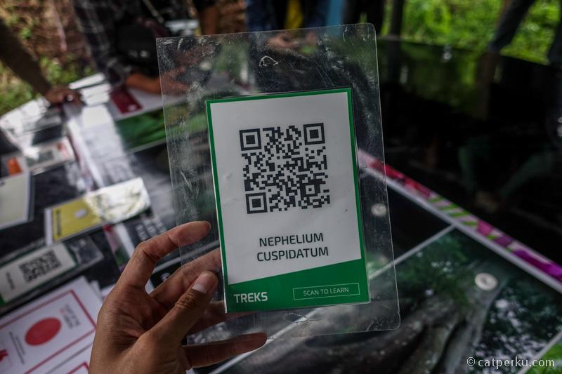 Scan QR code seperti ini agar tahu informasi mengenai flora di Fashion Forest secara instant lewat laman di internet