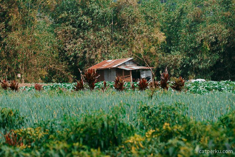 Selain potensi wisata alam yang indah, Desa Sumber Urip juga memiliki banyak potensi sebagai Desa Wisata.