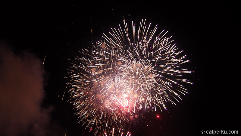 Sydney fireworks! (1)