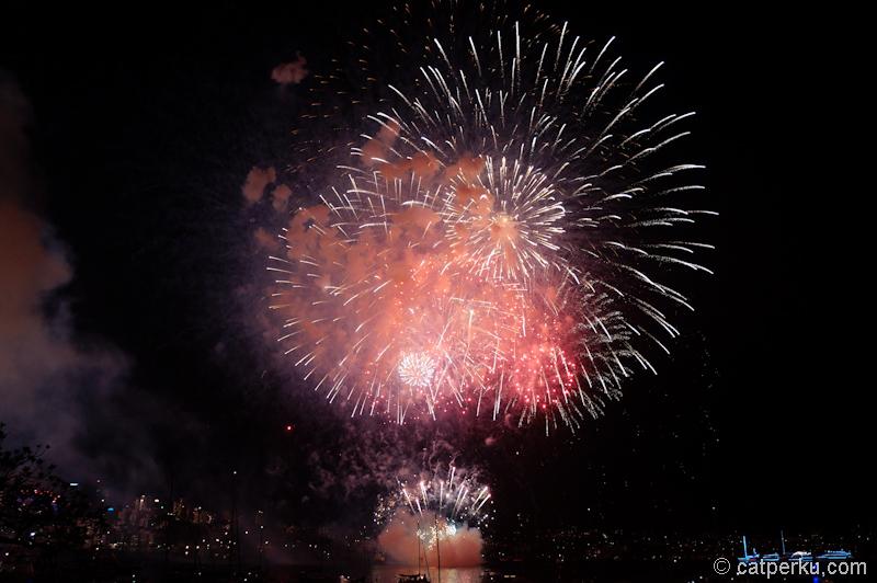 Sydney fireworks! (13)