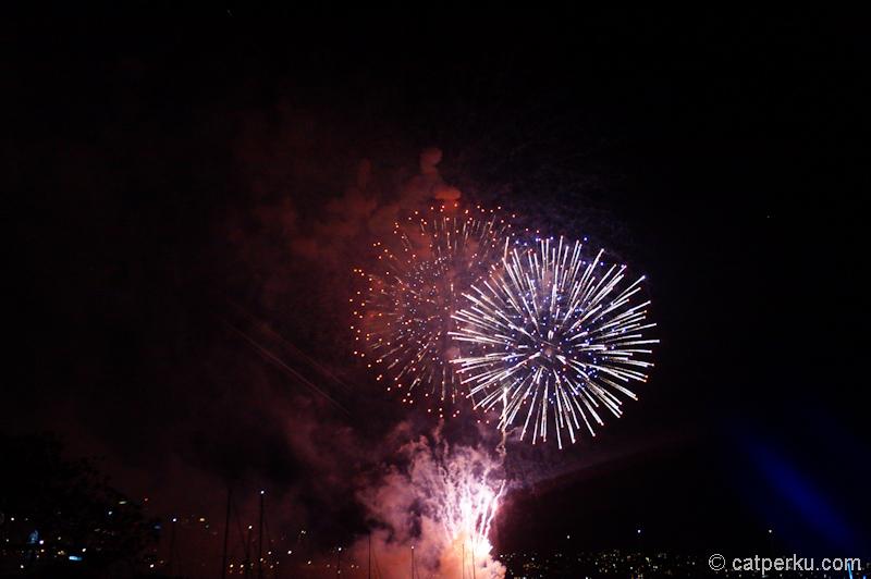 Sydney fireworks! (4)