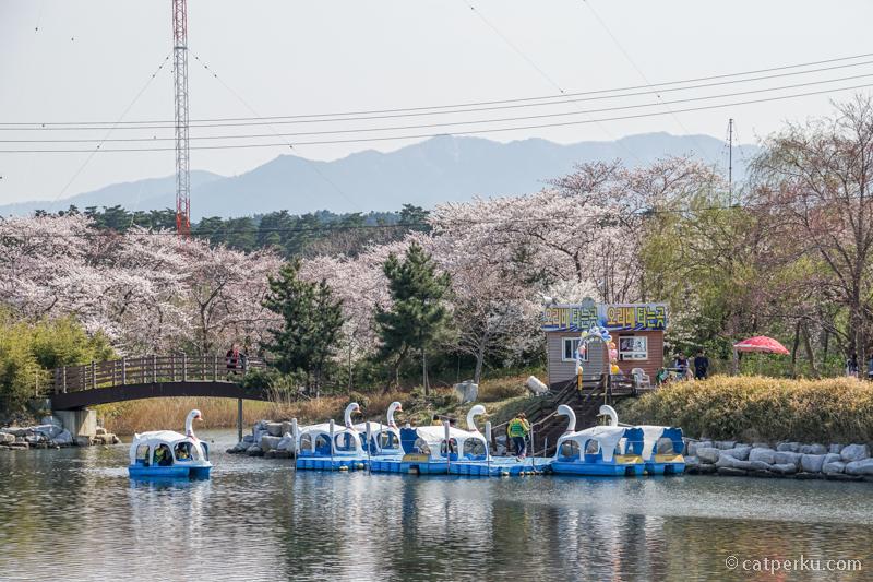 Taman kota ini berada di tepi danau, tak jauh dari Pantai Gyeongpo