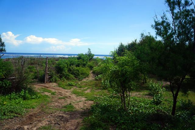 Pintu masuk menuju Pantai Aik Kangkung. Tidak ada penjaga, tidak perlu bayar kepada siapapun. Tetapi, tetap jaga kebersihannya ya kalau kesini :)