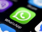 Whatsapp Nuevo