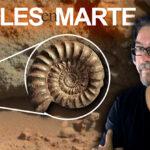 Fósiles en Marte y NASA ni se Entera