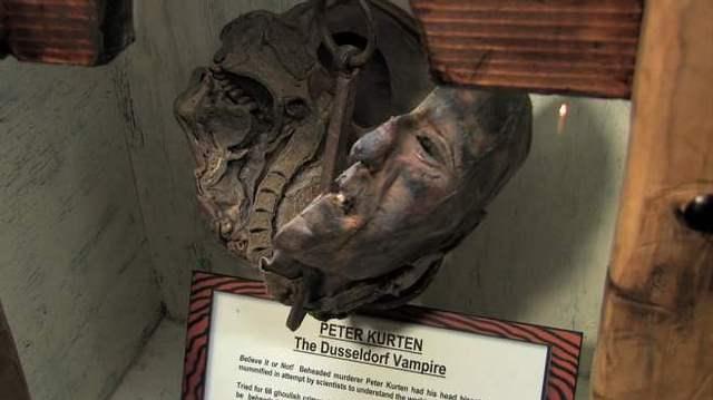La cabeza momificada en exhibición.