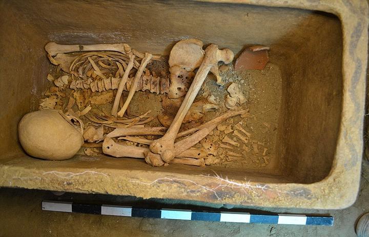 El esqueleto bien conservado.