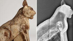 Decenas de momias y estatuas de gatos en las pirámides de Egipto