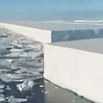 ¿Están cortando los Glaciares con Láser desde el Espacio?