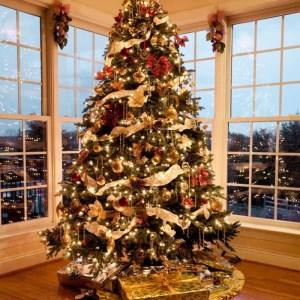 Inspiration til julegaver - og de bedste bogkonkurrencer