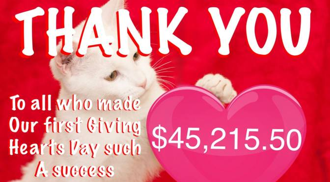 Thank you from the Bottom of Our Hearts!