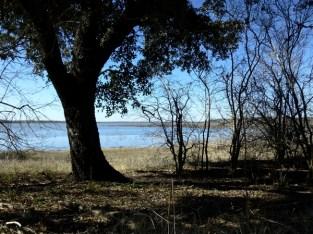 Lake Somerville.