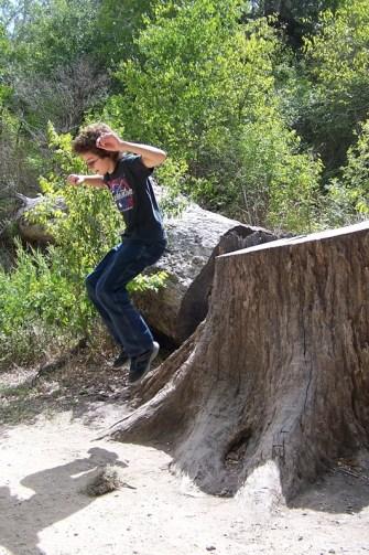 Kid jumping off giant stump.