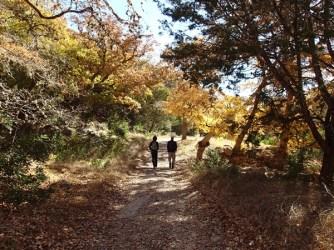Guys Hiking