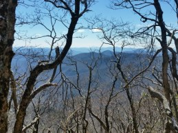 Standing Indian Mnt. view-ish.
