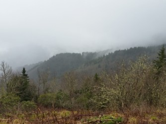 And more fog.