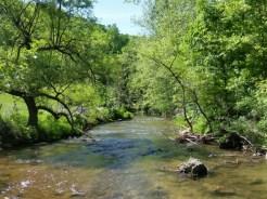 Holsten River