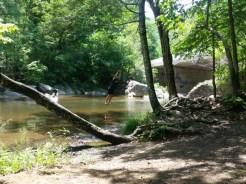 Jennings Creek Swimming Hole