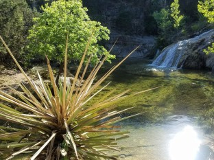 Waterfall on the Spicewood Springs Trail.