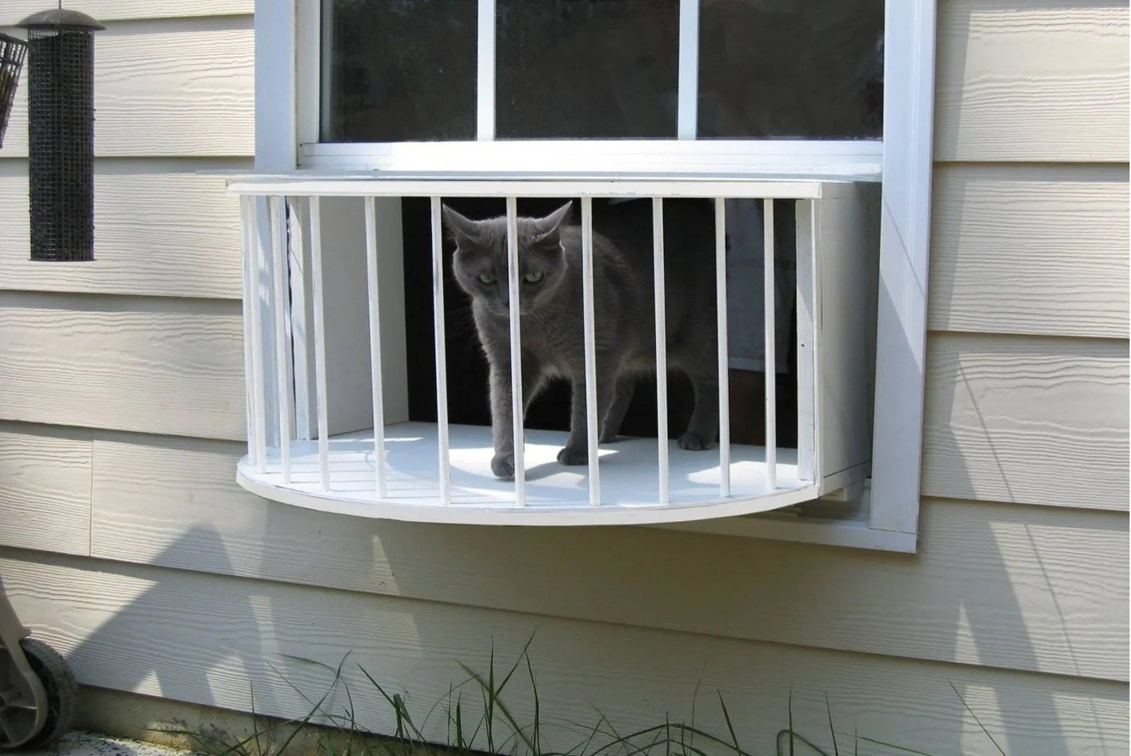 The Cat Solarium is the newest cat product must-have. Every cat loves boxes, but the Cat Solarium is the ultimate box: A cat house box or cat window patio. These Cat Solariums are made in the United States/ Alabama.They are made of the highest quality components available and will last for years. The structure itself is made of ¾ inch cabinet grade plywood and painted with marine grade paint. They are very durable, sun and water resistant.  This cat house is exactly what the name means. It is a room which fits in most common windows of houses, apartments and businesses. This cat house has a complete 180-degree view. The overhead roof made of scratch-resistant plexiglass which provides a great overhead view of the sky as well as any of nature's creations.There are over 20 parts that connect to rows of grooves that if 100th of an inch off, the whole box will not go together. Precision is key. All those parts get multiple coats of paint. The paint cost us $75 for a gallon and is specially made for us by the Amish. Check out our site for the different options available.  This standard model comes with the structure consisting of the top and bottom, sides, a 1/4″ Plexiglas roof, 14 posts and enclosure material to seal off the sides of the box. The dimensions are 26″ wide and 14 1/2″ tall. It will fit in 95% of all double hung windows. Be sure to check out all the options available. We recommend the mesh screen for summer time and the plexiglass weather insert for the winter.The Cat Solarium: the unique way to let your indoor cat outside safely.  Cat solarium, cat window perch, cat windowsill perch, cat perch, modern cat perch, cat window bed, cat window seat, cat veranda, cat window ledge, cat windowsill ledge, feline window box, feline solarium, cat window box outside, feline window box enclosure, cat window box enclosure, feline window perch, feline perch, modern feline perch, feline window seat, cat window condo, cat enclosures, outdoor cat enclosures, cat window pen,