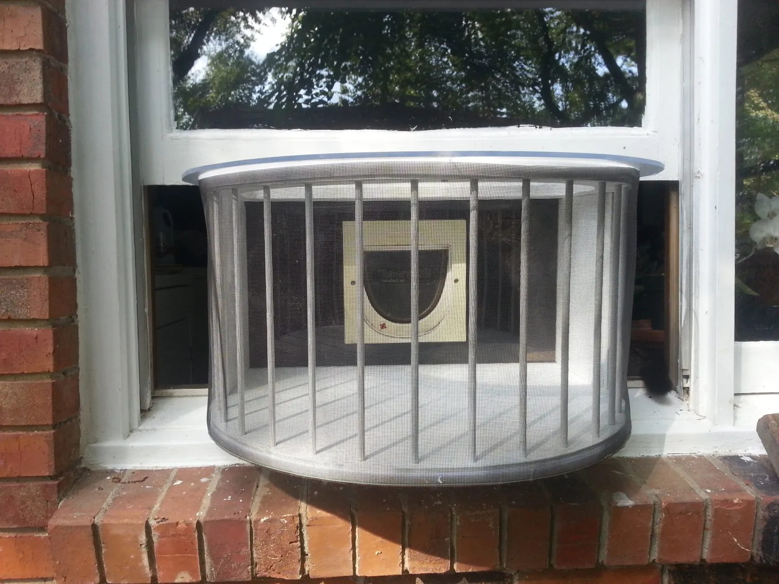 Cat solarium for Window window