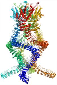 protein nobel prize chemistry 2017