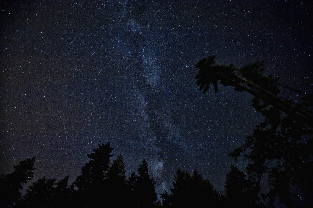 meteor night sky shooting star perseids