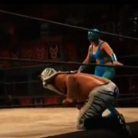 LUCHA UNDERGROUND RESULTS: Kobra Moon Arrives, Catrina Continues to Plot (February, 10th 2016)