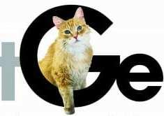 CatGenie