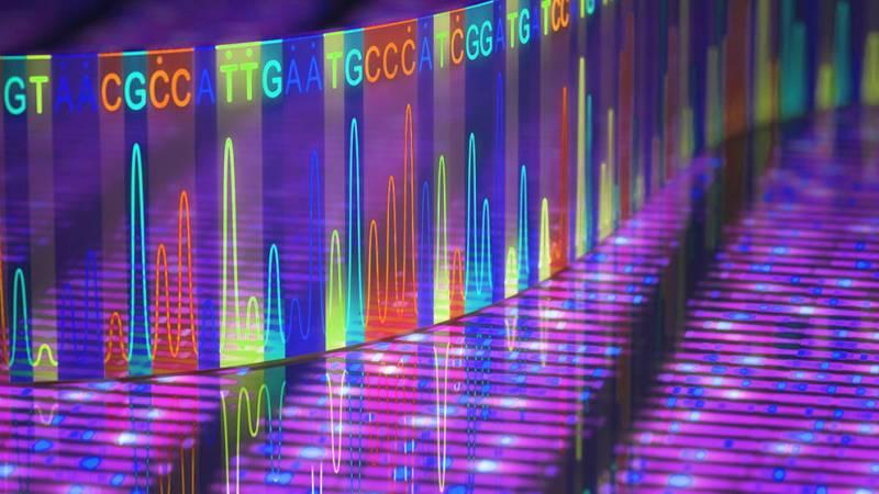 Analisi dei dati genomici prodotti da CORVELVA sul vaccino Priorix Tetra