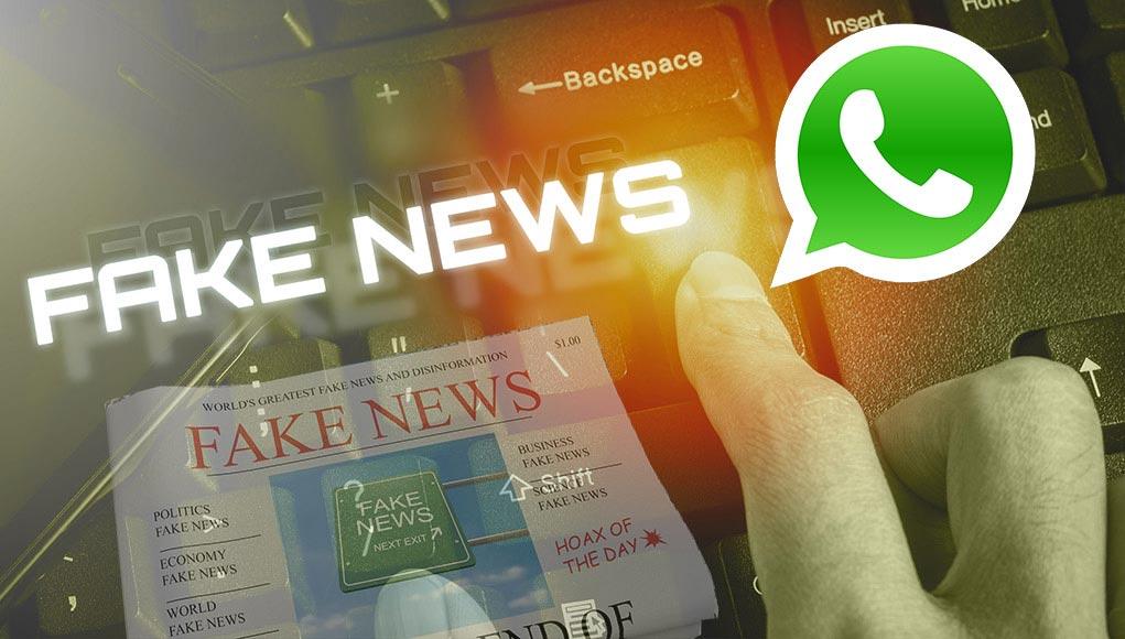 La scienza di Whatsapp