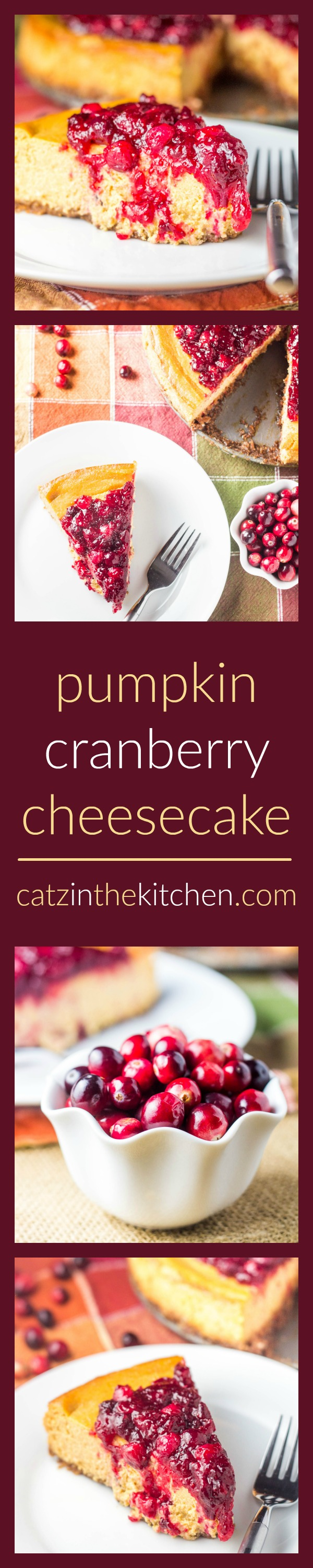 Pumpkin Cranberry Cheesecake | Catz in the Kitchen | catzinthekitchen.com | #dessert #pie #cranberries #Thanksgiving