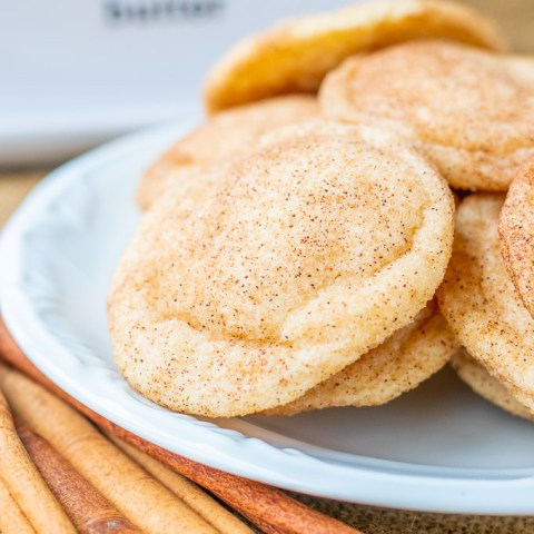 Our whole family has declared this recipe the best snickerdoodle cookies ever...or, at least, the best ones to ever enter our humble abode!