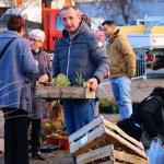 bourse de dons de plantes 2017_5