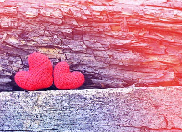 craft hearts in nature