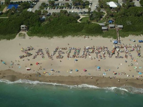 Save the Indian River Lagoon · Causes