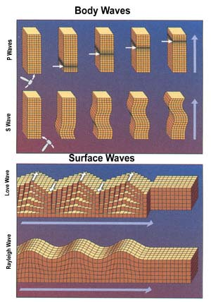 Body Waves & Surface Waves