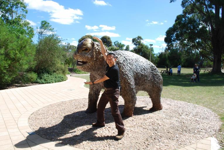 diptrotodon hippopotamus wombat megafauna