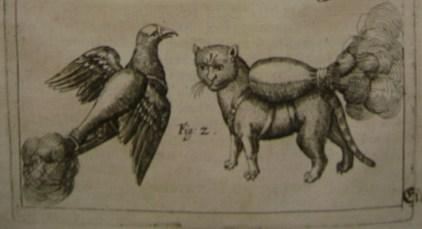 roket-cats